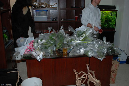 March 2009: Auction Items